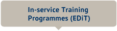 In-service Training Programmes (EDiT)
